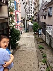 朝散歩 (2012/9/4)