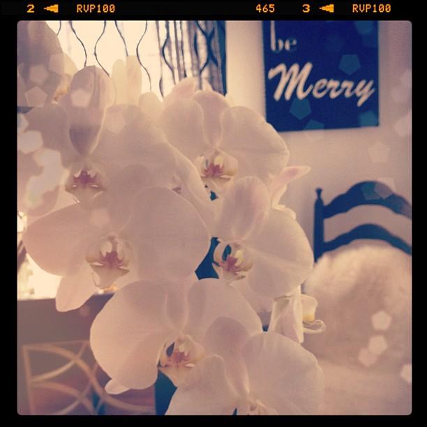 be Merry... Happy Friday!