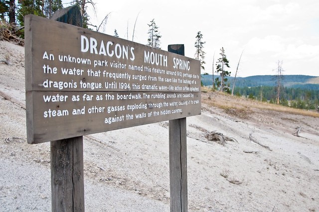 08.07.12_Yellowstone 211