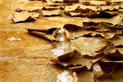 like dead leaves