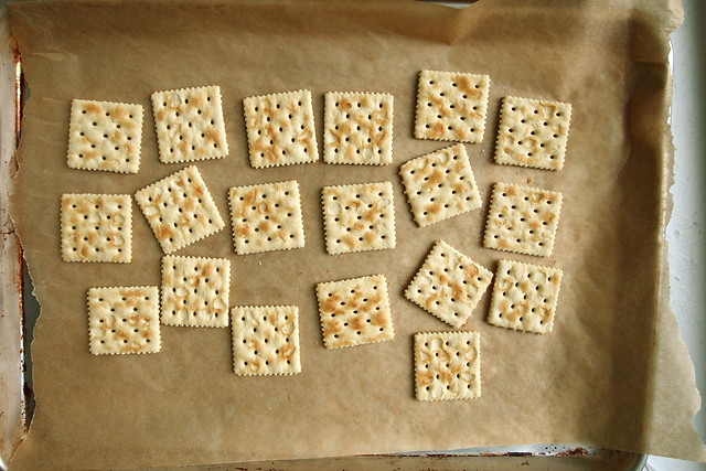 Toasted saltines for panna cotta