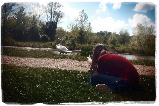Aaron and the Swan at Barnsley Garden