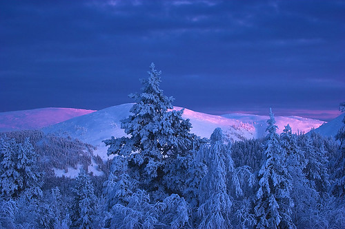 winter finland lapland galleryoffantasticshots