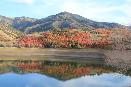 Porcupine Reservoir Reflection