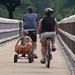 Small photo of Along for the ride at High Bridge Trail State Park