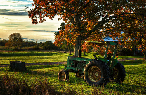 autumn tractor tree fall grass rural landscape country quinte princeedwardcounty bayofquinte flickraward5
