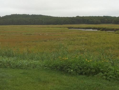 View from Woodman's (Essex, MA) by randubnick