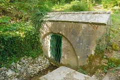 Marne River spring