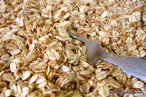 Well Coated Muesli