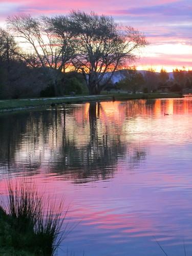 sunset lake tree water reflections