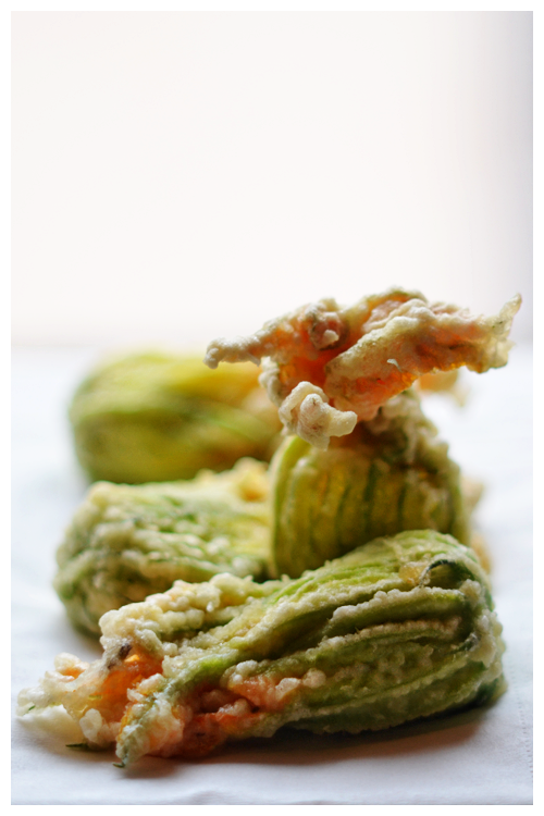 stuffed zucchini flowers© by Haalo