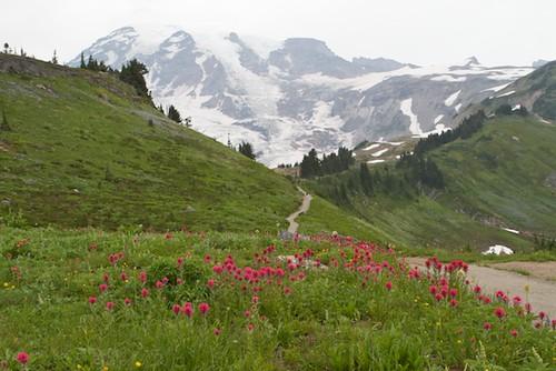 Mt. Rainier is getting shorter