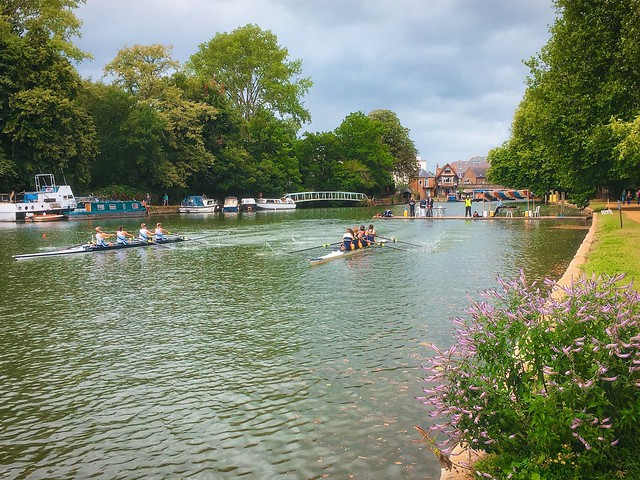Coxed fours on the Isis