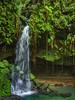 Emerald Pool Waterfall, Dominica
