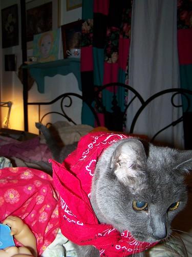 Simone in bandana by Emilyannamarie