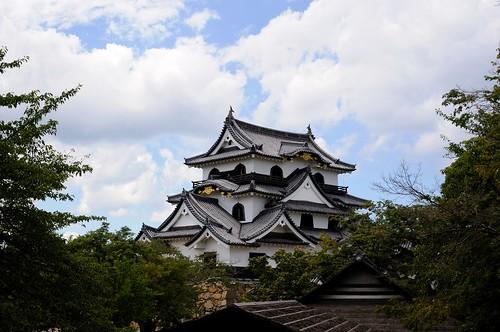 彦根城 (Hikone Castle)