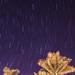 Andromeda por eit1mx