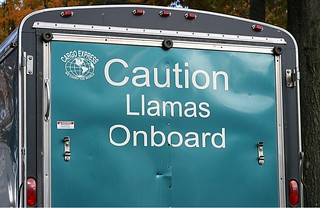 I didn't realize llamas warranted a warning.
