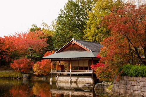 Autumn in the Japanese Garden