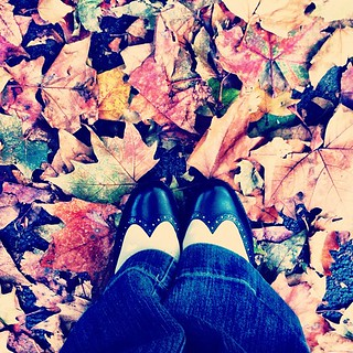 Autumn feet - survived a day of walking and shopping in my new shoes - gotta love Clarks :)