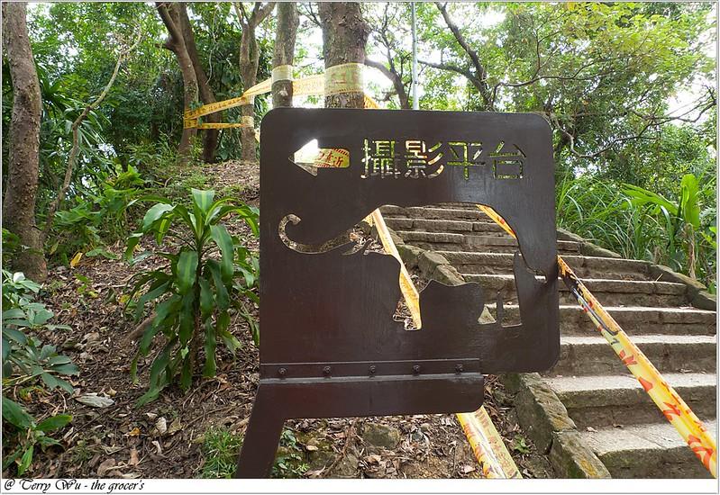 象山芭樂步道-15