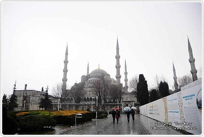 藍色清真寺 (9).jpg
