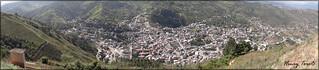Piñas ciudad Orquídea.