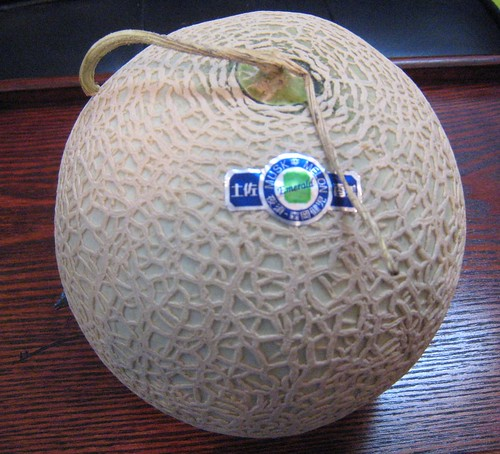The famous Japanese melon