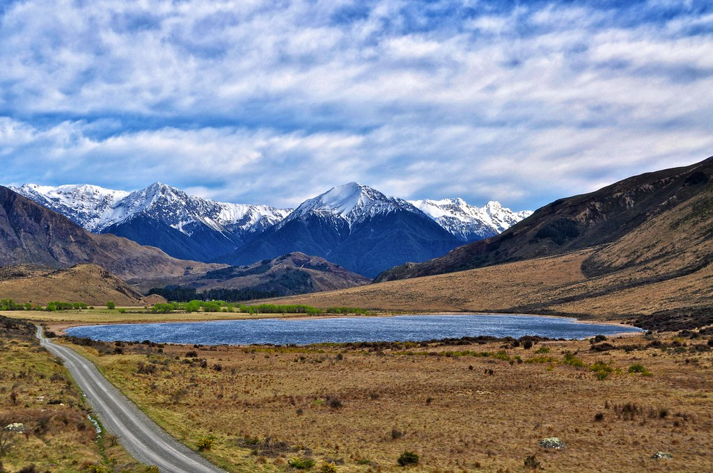 Image result for tranzalpine train new zealand
