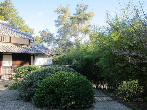 Hakone Japanese Gardens, Saratoga, CA IMG_2307