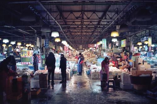 Noriyangjin Fish Market