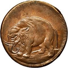 Craige Elephant token
