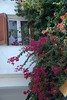 Kreta 2007-2 368