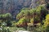 Kreta 2007-2 477