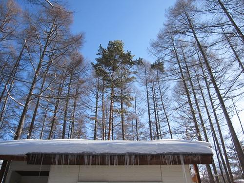 屋根の雪もたっぷり・・ by Poran111