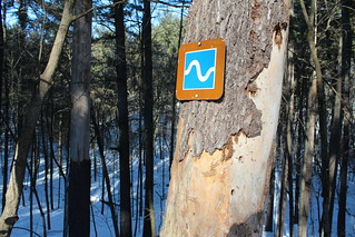 Trail marker at Falls Creek SNA