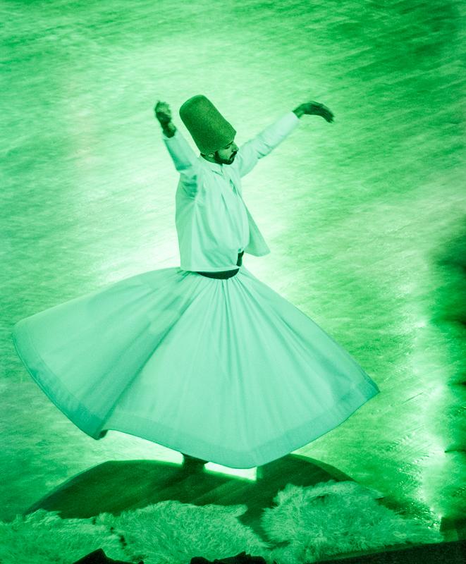 It is graceful and elegant.  DSC_4631-4