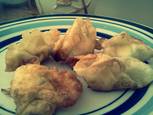 firstattemptatwontons2013