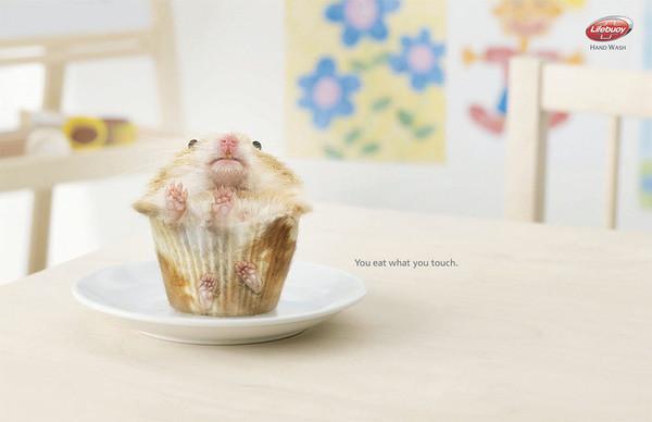 eat hamster
