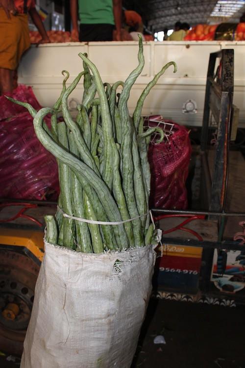 IMG_6784-Dambulla-wholesale-produce-market-snake-gourds