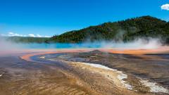 Yellowstone National Park, Wyoming, USA.