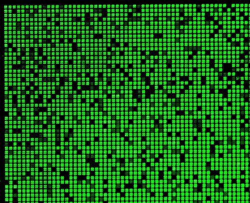 peptide microarray