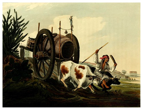 003a-Transporte de agua-Picturesque illustrations of Buenos Ayres and Monte Video..-1820- Emeric Essex Vidal