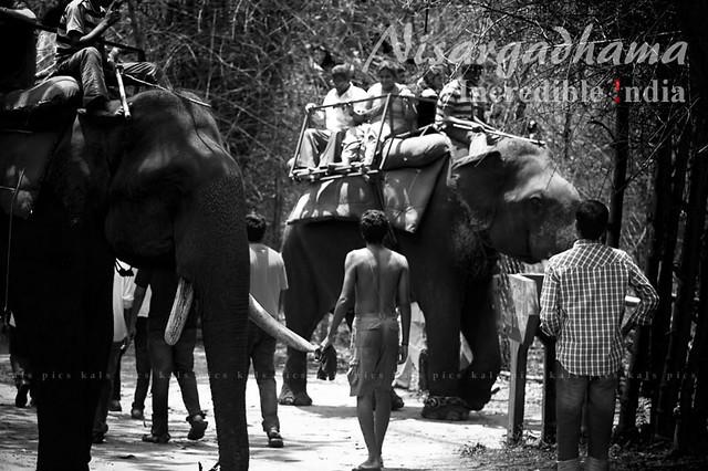 Incredible !ndia | Nisargadhama