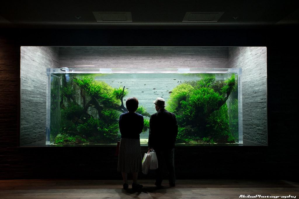 sumida-aquarium#5