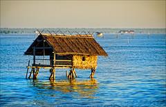 The hut . .