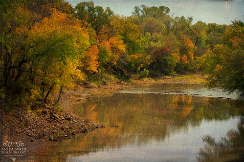autumn fall fallcolors autumncolors textures kansas sugarcreek creekbed leaveschangingcolors ftscottkansas magicunicornverybest anedasmith