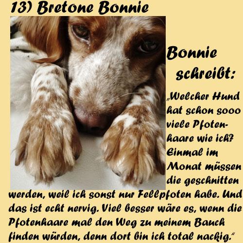 13-Bretone-Bonnie