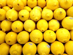 citrus, lemon, yellow, meyer lemon, yuzu, produce, fruit, food, tangelo, sweet lemon, bitter orange, citron,