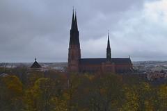 Uppsala Cathedral